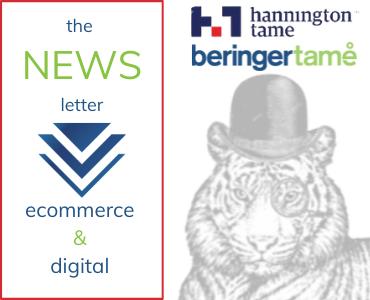 370 x 300 Hannintgon Tame Beringer Tame Digital & ecommerce newsletter