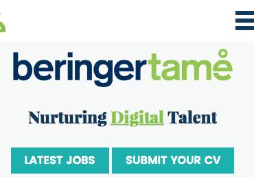 Beringer Tame website